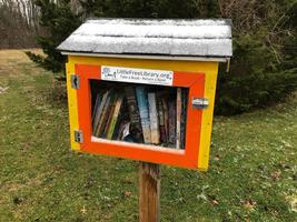 Free Little Library Project